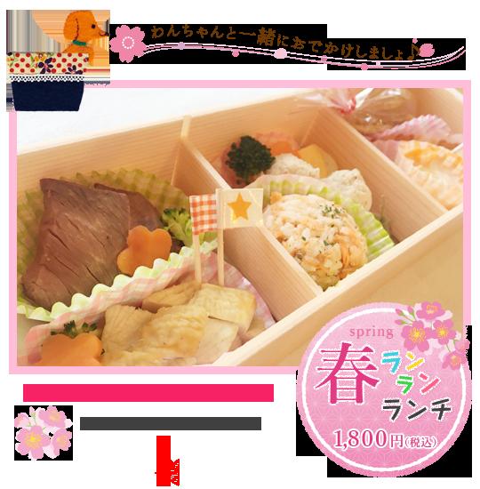 春ランランランチ1800円