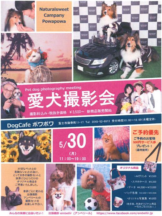 blog201605photo.jpg
