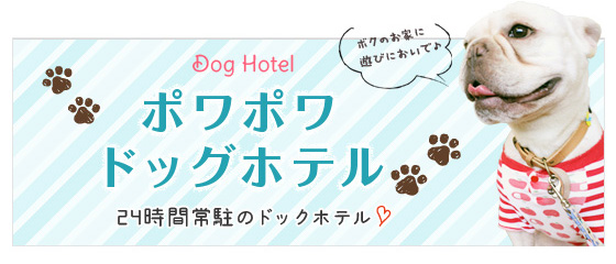 hotel_img1.jpg